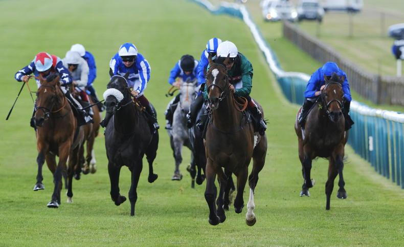 DONN McCLEAN: My top Saturday selections