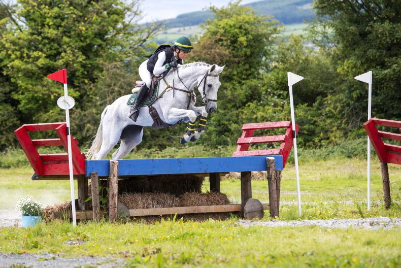 EVENTING: Shanahan and Swan shine in junior division