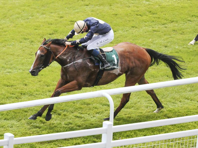 CURRAGH SUNDAY: Speedy Velocidad makes it two out of two with Airlie Stud win