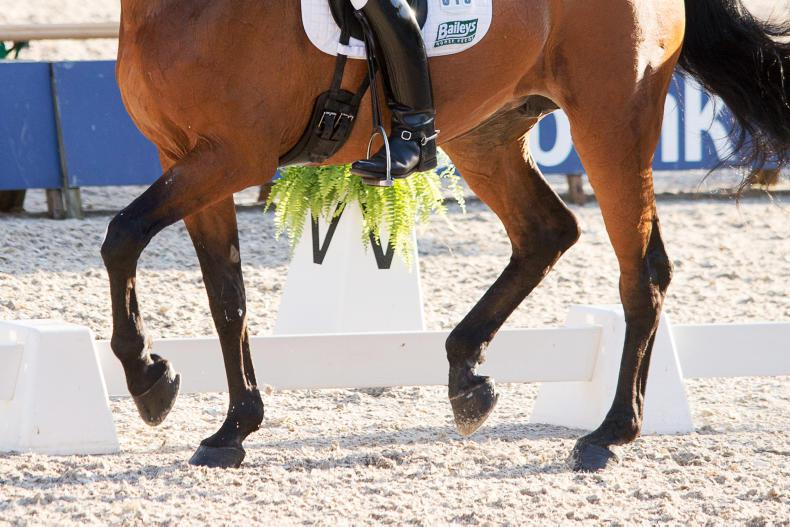 Independent arbitrator upholds HSI's decision not to send dressage team to Tokyo