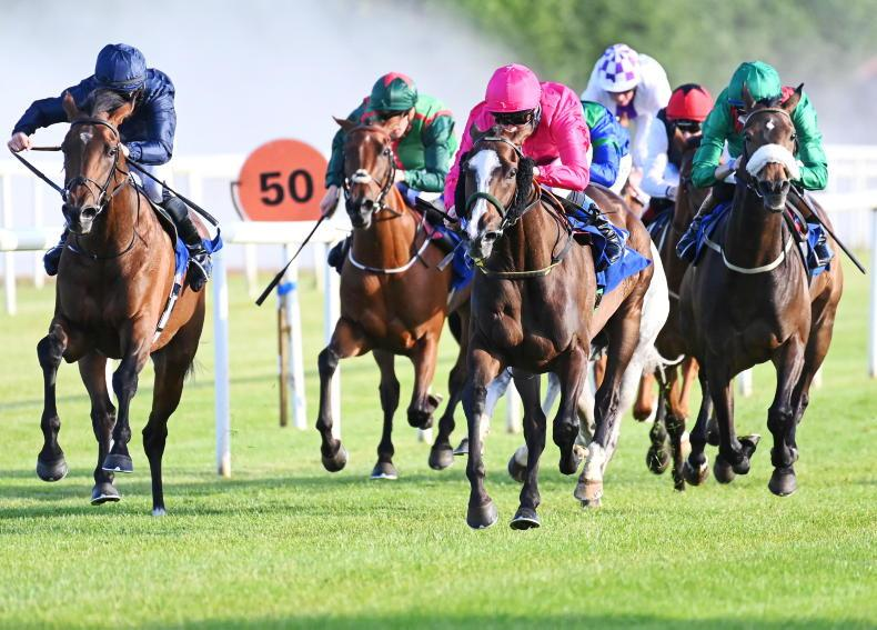 ROSCOMMON TUESDAY: Layfayette bags another big prize