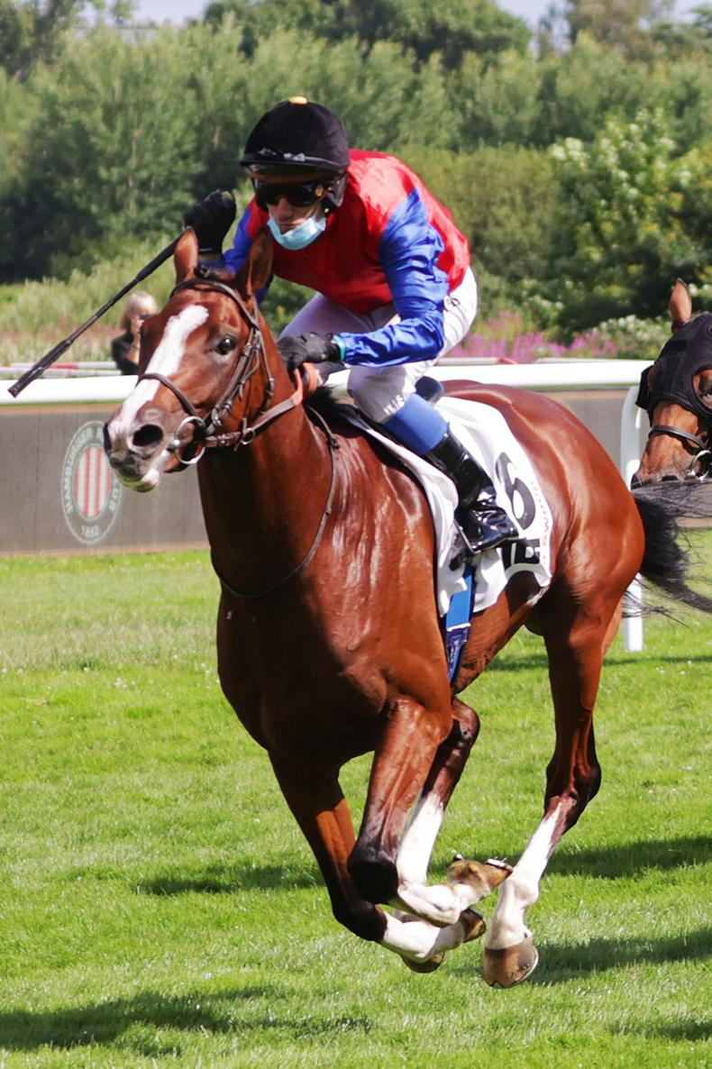 FRENCH PREVIEW: Swoop can hold off O'Brien challenge
