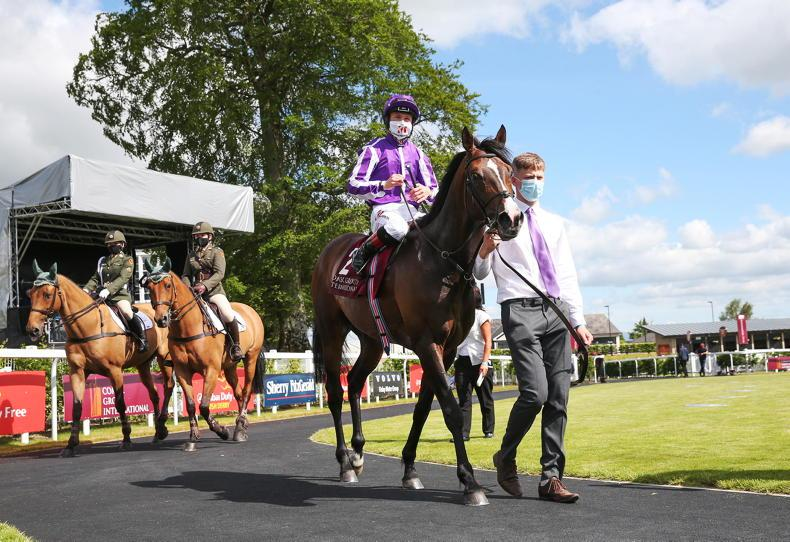 CURRAGH ON TV: 'Catch the people who are doing it and punish them'