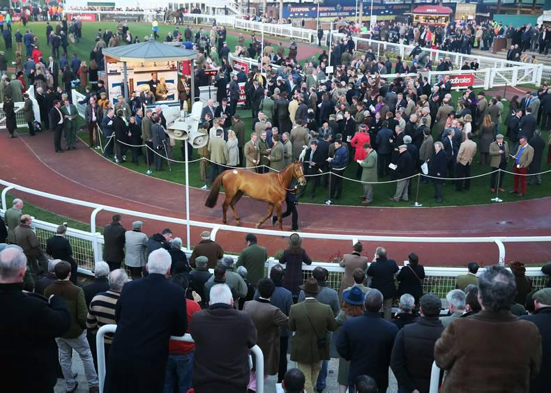 Moon Racer owner plays up his Cheltenham winnings