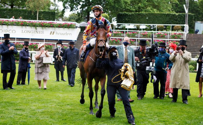 THE OWNER: RacehorseClub