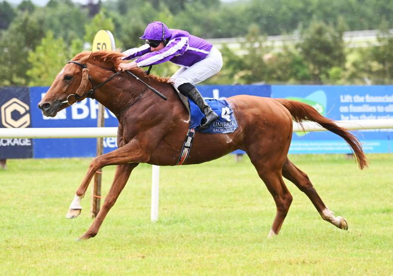 LIMERICK SUNDAY: King Of The Castle to build on first success