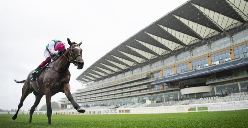 Ascot excited to be planning for larger crowd at King George meeting
