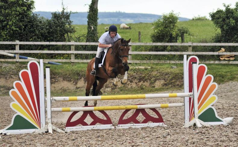 PONY TALES: Back to jumping in Roscrea