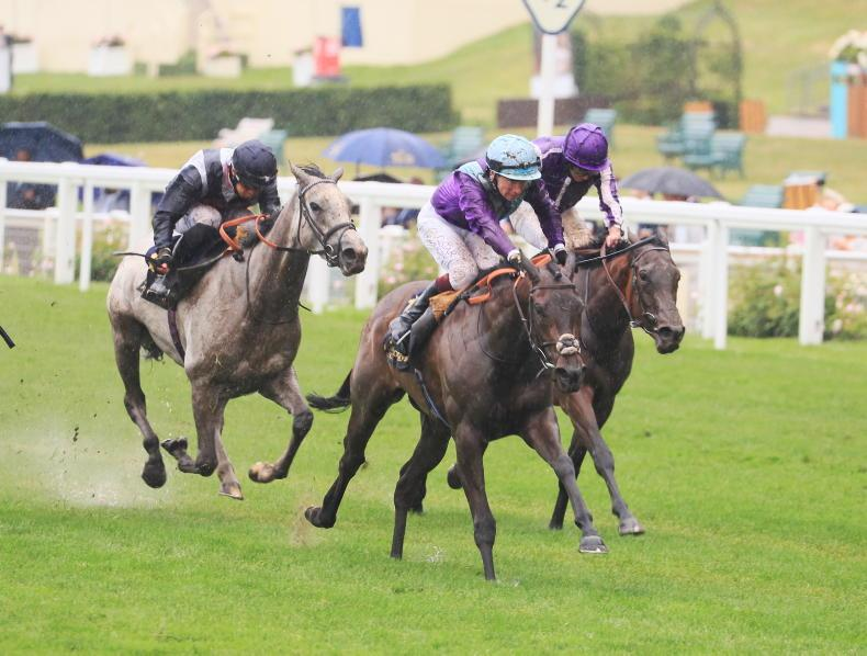 Falmouth thriller in prospect as Group One rivals square up again