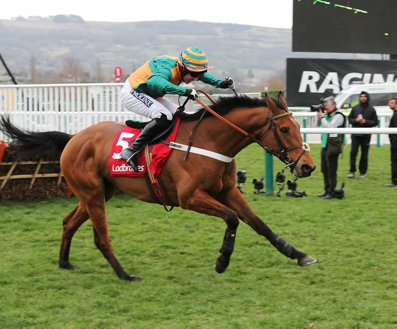 CHELTENHAM: Cole takes the leading role