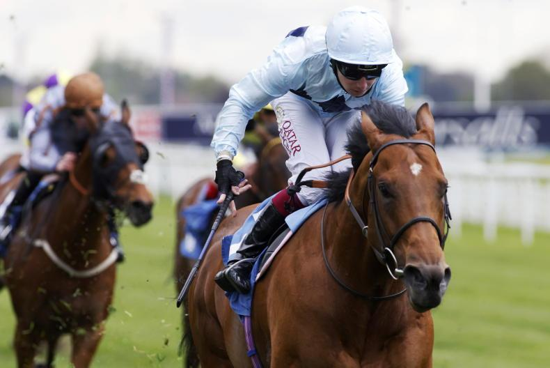 BRITISH PREVIEW: Can a new sprinting star can land July Cup?
