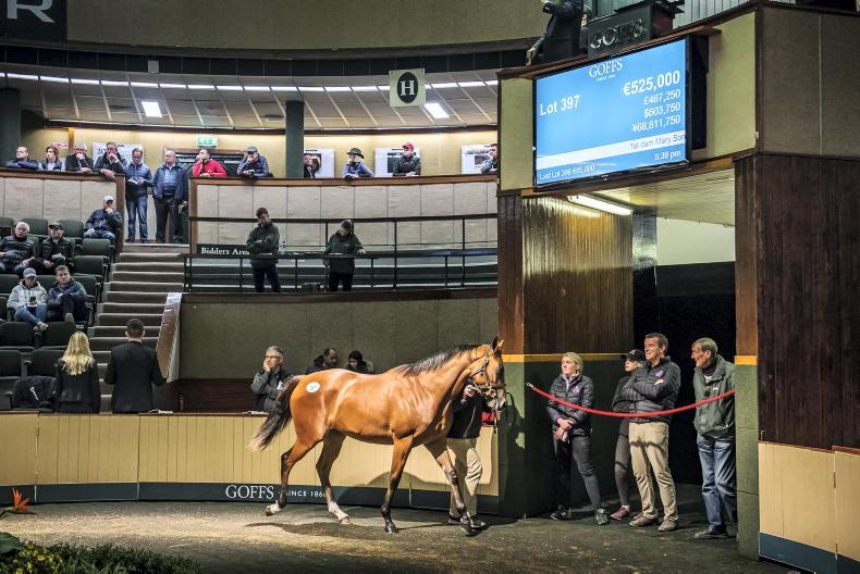 Goffs clarify options for Orby Sale in light of Irish travel restrictions