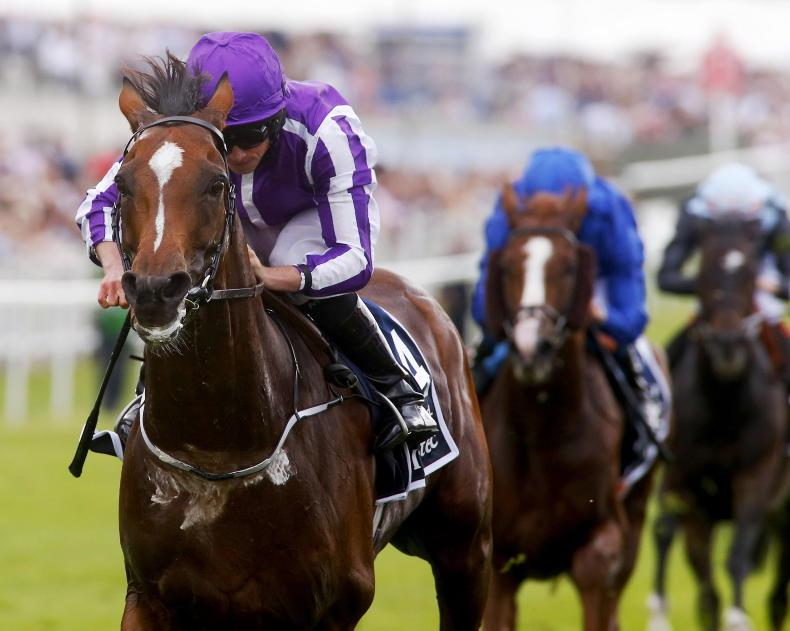 Frankel, Found and many more – superstars at every turn for Galileo