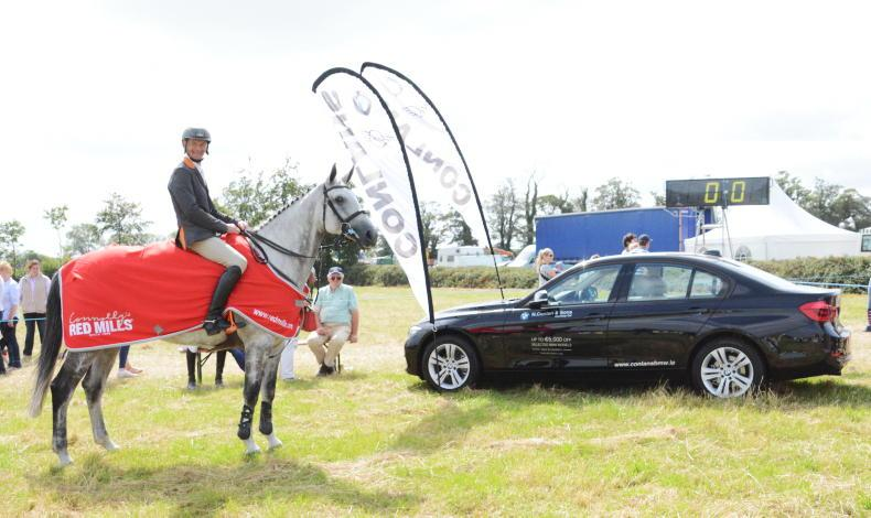 PONY TALES: Newcastlewest Show will be back!