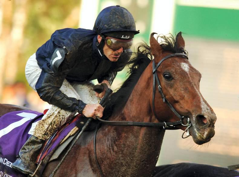SIRE REVIEWS: Dylan Thomas already a leading sire