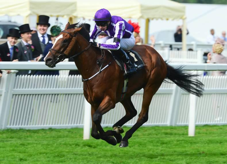 SIRE REVIEW: Light to take a Leading role