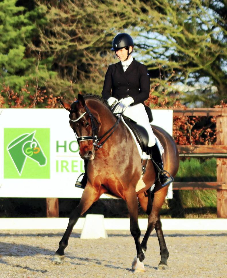 DRESSAGE:  Double joy for Mellor and Jarden
