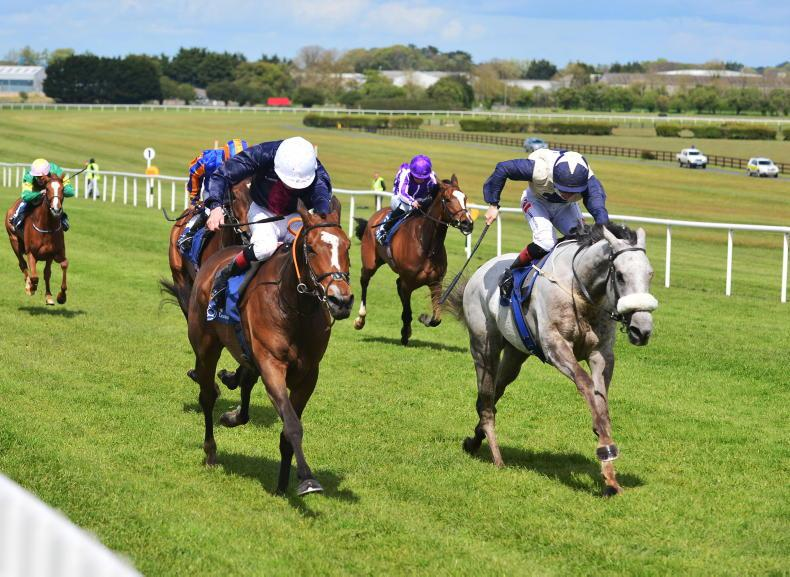 CURRAGH SUNDAY: Top-class racing features two Group 2s at the Curragh on Sunday