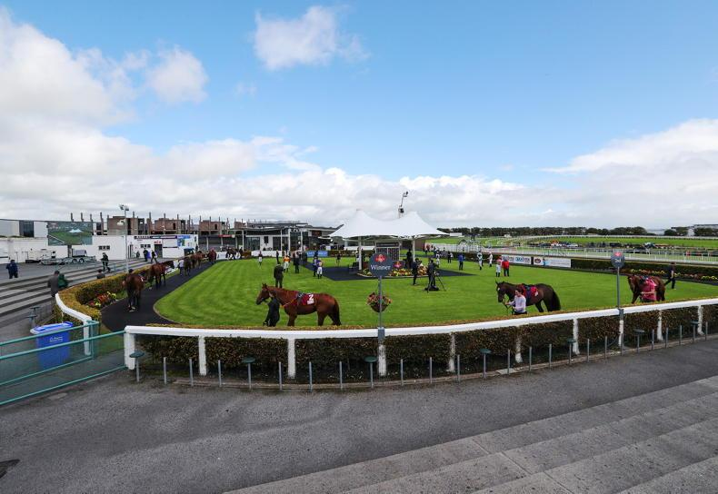 Traceability a key factor in decision to cap Galway crowds at 1,000 per day