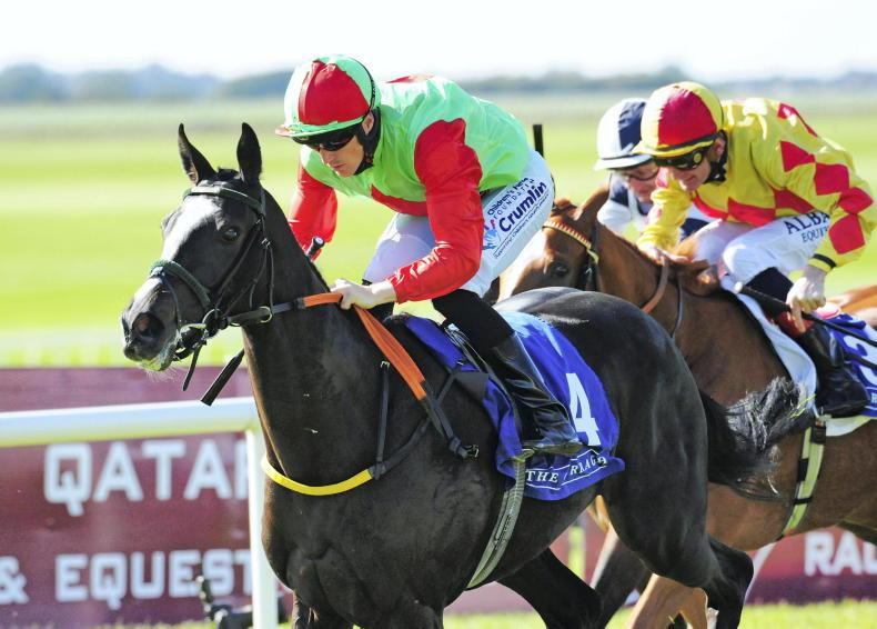 NEWS: Strong interest in Naas features