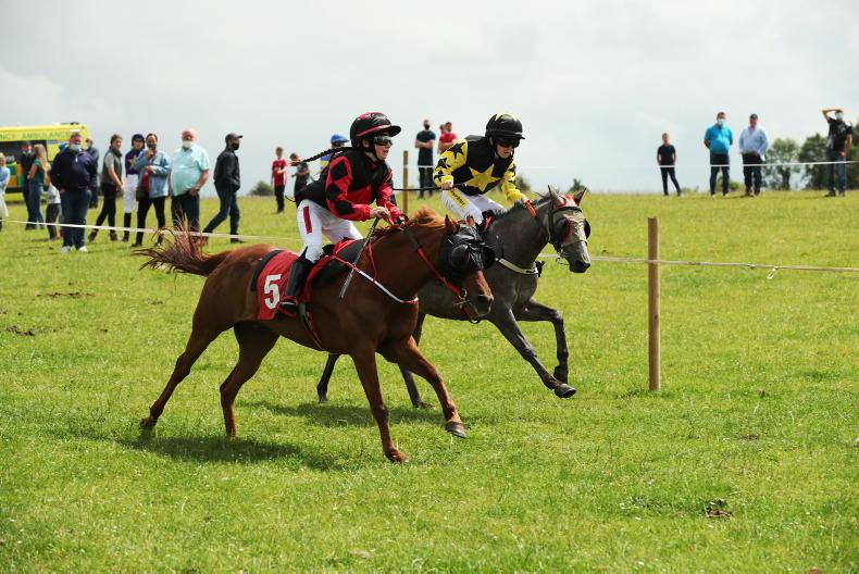 HORSE AND PONY RACING: O'Connor takes the honours