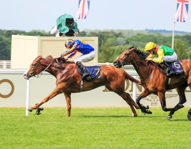 Love on target for King George date