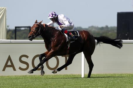 Bolger eyes first Sussex Stakes with Poetic Flare