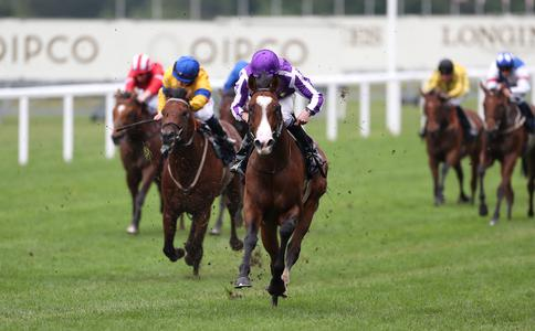 Point Lonsdale tests credentials in Tyros Stakes