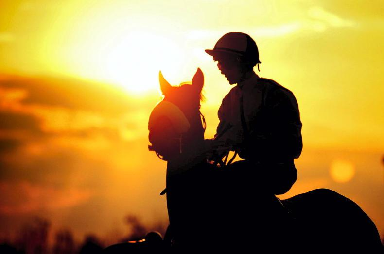 AIRO to propose new fund for retired racehorses