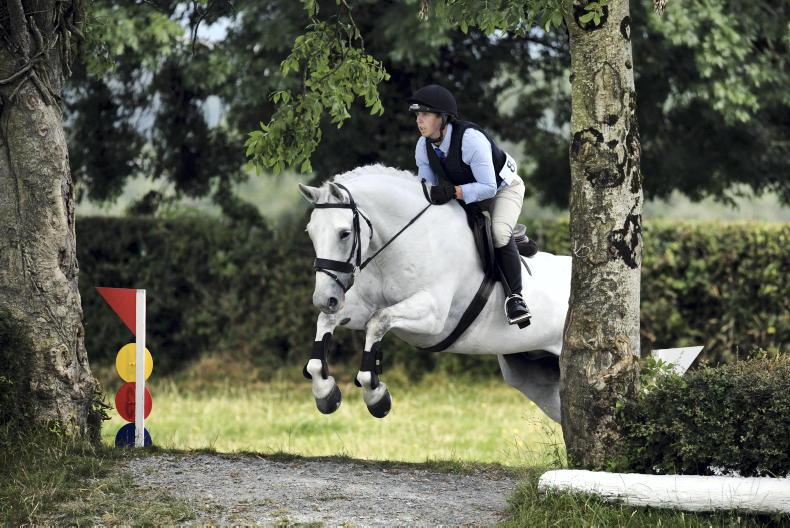 AROUND THE COUNTRY: Hollypark Troy on track for RDS
