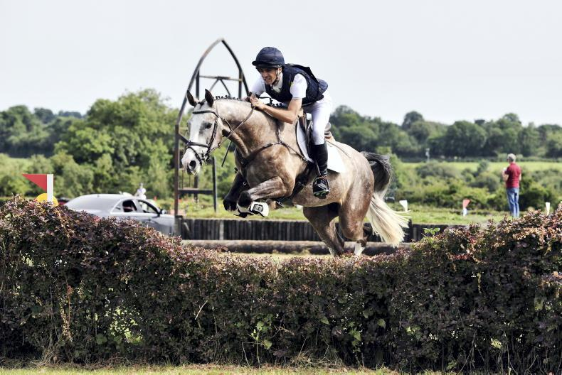 AROUND THE COUNTRY: Belline Gucci and KHH Malito Park shine to win