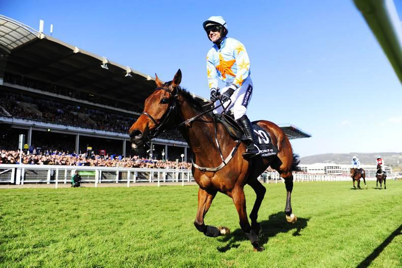 CHELTENHAM CONCLUSIONS: Reflections on another great Festival