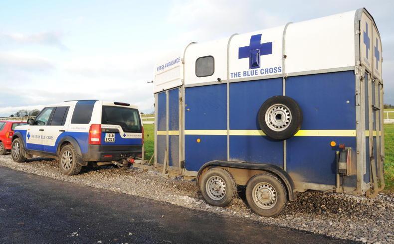 NEWS: HRI calls in Gardaí following Panorama claims