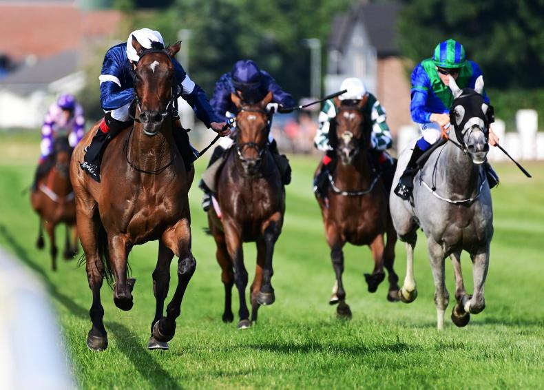 DOWN ROYAL FRIDAY: O'Brien's Master defends Plate title