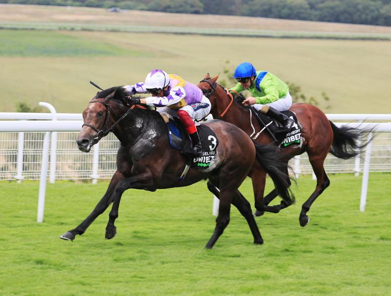 GLORIOUS GOODWOOD: Tuesday: Angel sprouts wings in Vintage