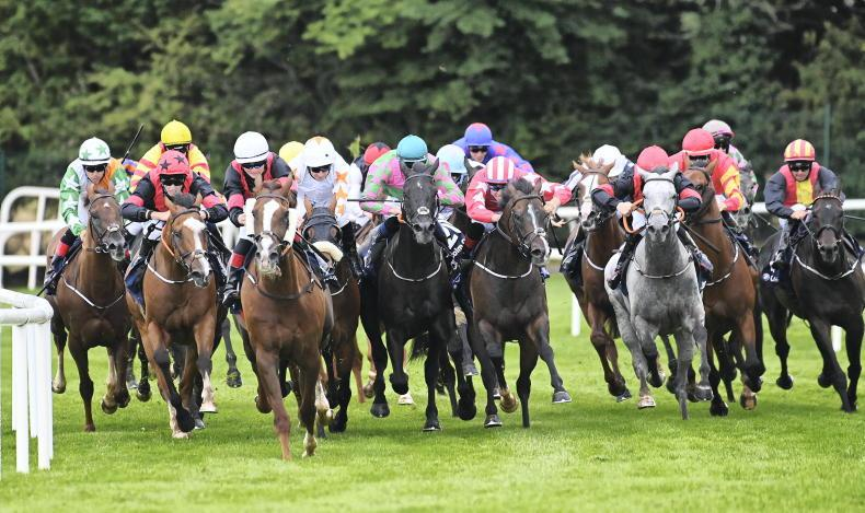 GALWAY TUESDAY: Sirjack finds the winning gap
