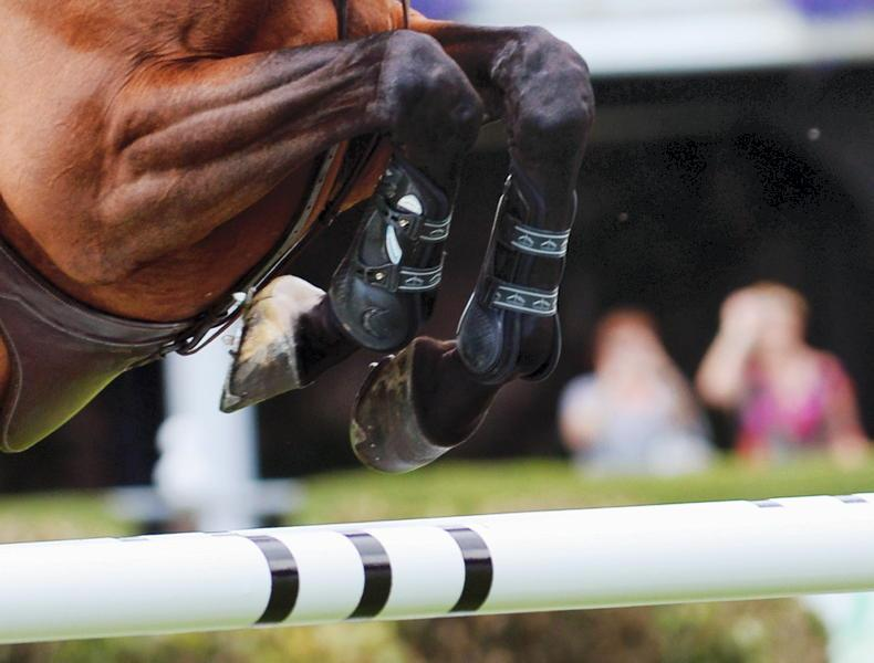 SHOW JUMPING: Higgins and 'Pearl' dive deep to win