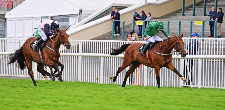 GALWAY THURSDAY: No Blues for Willie with fabulous four-timer
