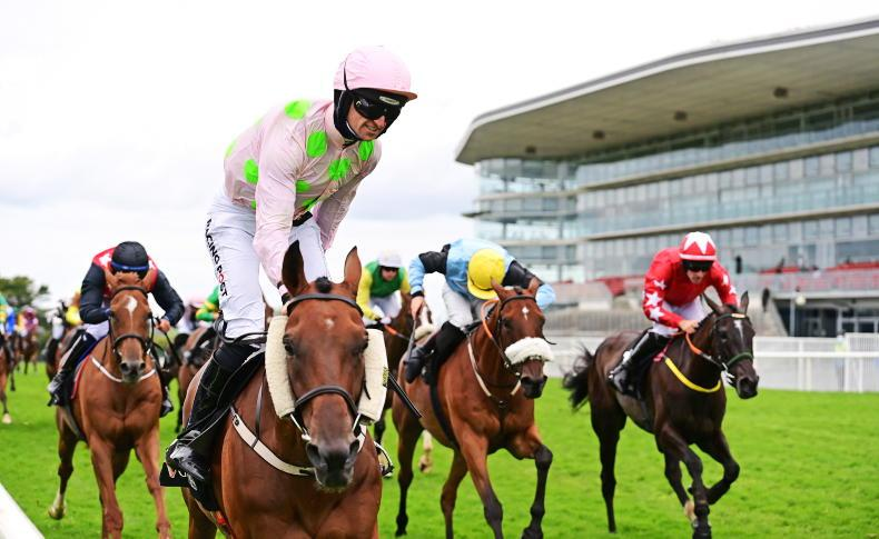 GALWAY THURSDAY: Mullins masterclass as Saldier makes history for father and son