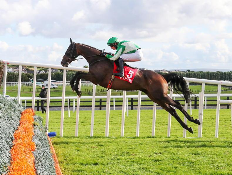 BREEDING INSIGHTS: Mullins strikes gold on the double
