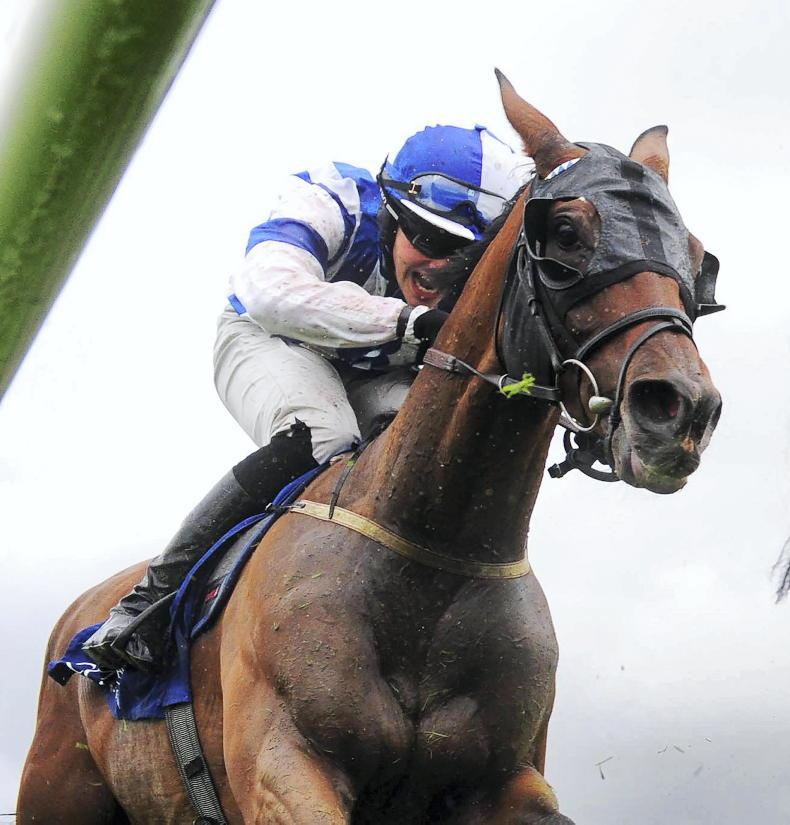 TIME WILL TELL: Slow-motion finish plays to Coltor's plate