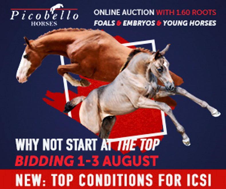 NEWS IN BRIEF: First online Picobello Auction