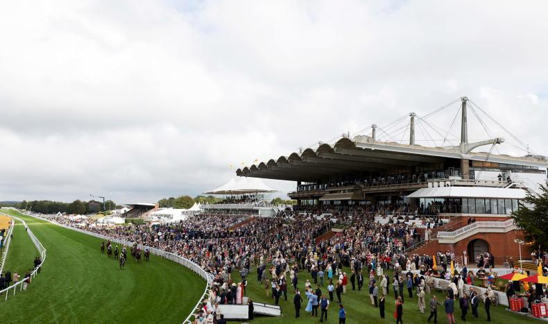 GLORIOUS GOODWOOD: Still Glorious after all these years