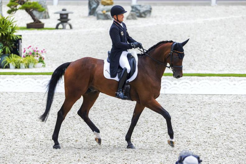 TOKYO EVENTING: Britain hold onto the lead, while Jung takes over individually
