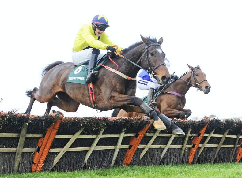 PEDIGREE ANALYSIS: Grade 1 Cheltenham 1-2 for Milan
