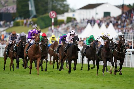 Commache Falls is Stewards' Cup hero