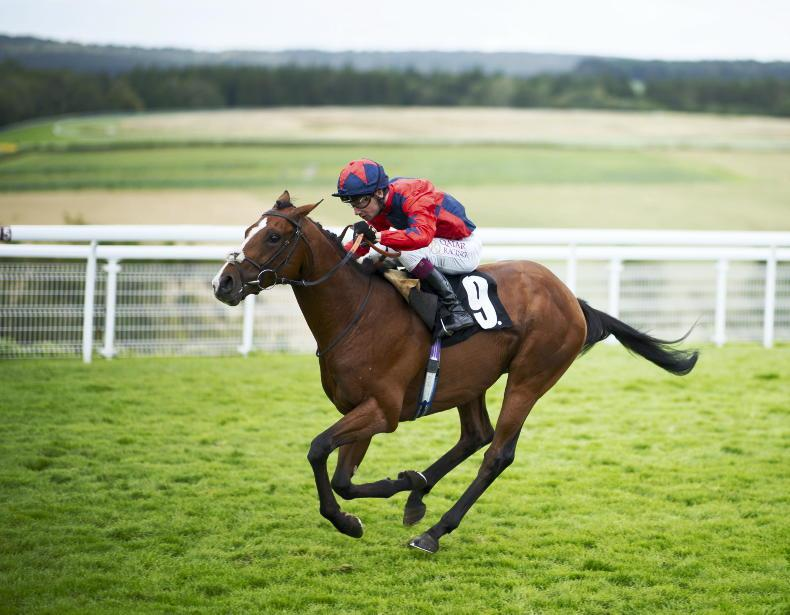 First British winner of €10,000 IRE Incentive
