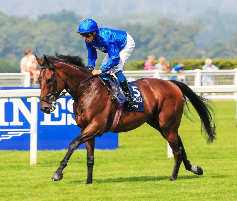 THE WEEK THAT WAS: 'Perfection in equine form'?