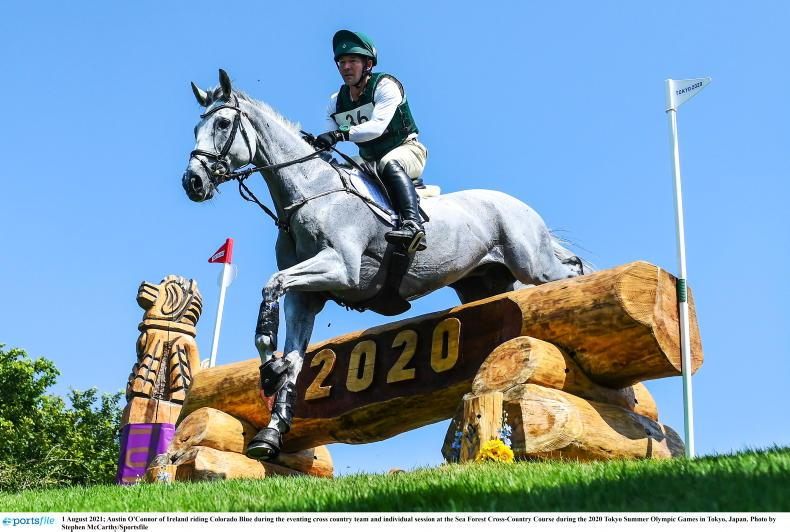 TOKYO CROSS-COUNTRY IN PICTURES: 'Class' horses and tough steering