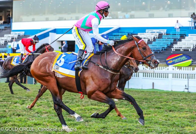 SOUTH AFRICA: Jet Dark bounces back to champion form